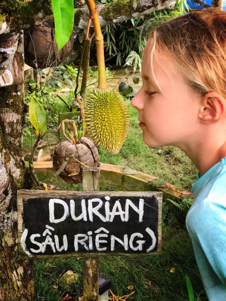 what to do with kids in Phu Quoc Island- bee farm