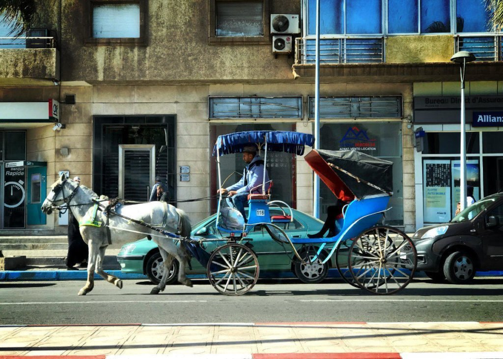 morocco travel tips - horse carriage,  morocco travel guide pdf,  morocco travel company,  morocco cost of travel,  morocco private travel,  morocco nomadic travel