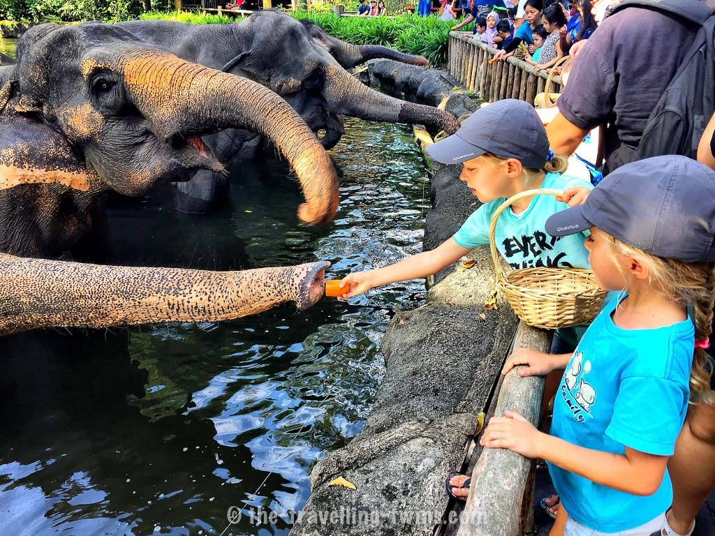 best places to visit in singapore,  places in singapore,  activities in singapore,  places of interest in singapore